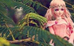 Разное: игрушка, кукла, листья