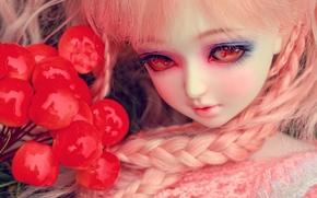 Разное: игрушка, кукла, косички, глаза, ягоды