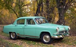 Машины: автомобиль, авто, машина, СССР, ГАЗ-21, ГАЗ, 21, М-21, Волга, салатовый, осень