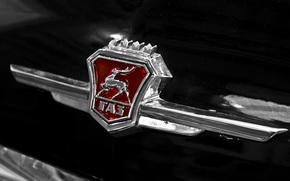 Машины: ГАЗ, автомобиль, СССР, классика, передок, чёрный, эмблема