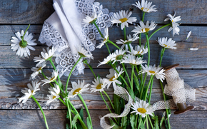 Цветы: ромашки, катушка, тесьма, салфетка