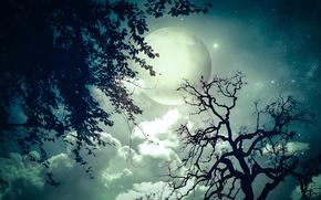Рендеринг: Луна, звёзды, небо, облока, космос, дерево, деревья