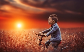 Настроения: мальчик, велосипед, поле, закат, настроение