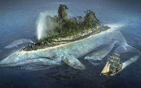 Рендеринг: кит, остров, корабль, парусник, лес, птицы, чайки, океан, море вода, прикол, юмор