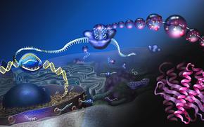 Рендеринг: молекула, ДНК, наука, биология, жизнь, химия, атомы, эволюция