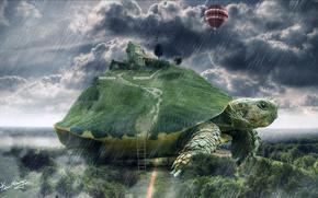 Разное: черепаха, лес, дождь, воздушный, шар, дом, корова, лестница, дерево, трава, облока, небо, фантазия, мир