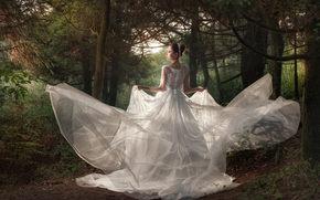 Настроения: свадьба, невеста, свадебное платье, платье, лес, деревья
