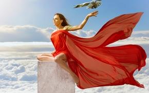 Настроения: Kaylee Renee, модель, ястреб, птица, материя, небо, облака, фантазия