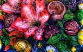 Цветы: цветы, микс, флора, hdr
