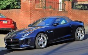 ������: Jaguar F-Type Roadster, Jaguar, Roadster, sports car, ������, �����