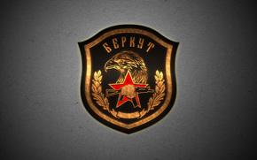 Оружие: Беркут, эмблема, шеврон