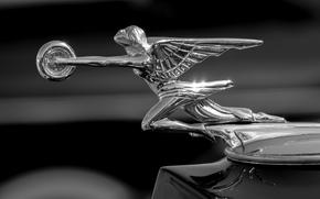 Машины: Packard, Goddess of Speed, Packard Hood Ornament, капот, значок, монохром, чёрно-белая, макро