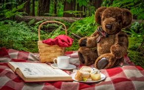 Разное: пикник, плюшевый мишка, медведь, игрушка, корзинка, книга, чашка, бутерброды, природа