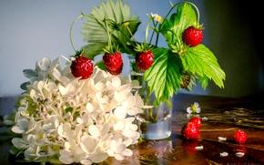 Разное: ягоды, земляника, стакан, цветок, гортензия, натюрморт