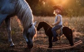 Настроения: мальчик, наездник, лошадка, качалка, шляпа, лошадь, конь