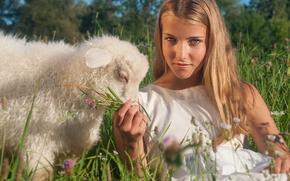 Настроения: девушка, взгляд, овечка, ягнёнок, настроение, луг