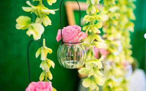 Цветы: роза, бутон, баночка