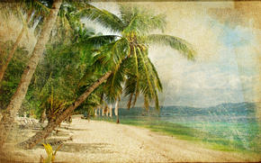 �����: vintage, beach, coast, palms
