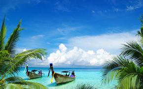 Корабли: boats, palms, Samui island, Thailand