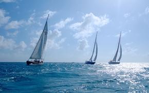 Спорт: Sint Maarten, Caribbean Sea, Синт-Мартен, Карибское море, яхты, регата, море