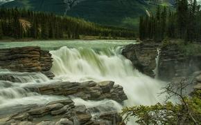 �������: Athabasca Falls, Athabasca River, Jasper National Park, Jasper, Alberta, Canada, ������� ��������, ���� ��������, ������������ ���� �������, �������, ��������, ������, �������, ����, �����, ���, �������