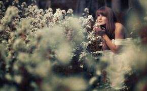 Настроения: девушка, цветы, настроение