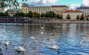 �����: Czech Republic, Prague, �����