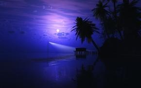 Рендеринг: пляж, море, пальмы, ночь, луна