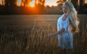 Настроения: блондинка, поле, закат, настроение