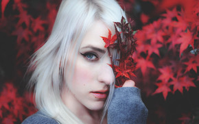 Настроения: блондинка, взгляд, лицо, портрет, клён, листья, настроение