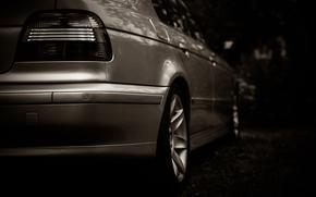 ������: bmw, e39, cars, �����