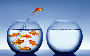 Рендеринг: аквариум, рыбы, art