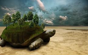 Рендеринг: черепаха, пустыня, деревья