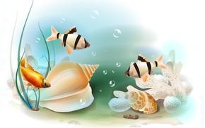 Рендеринг: аквариум, рыбки, барбусы, ракушка, art