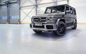 Машины: Mercedes-Benz, G-Class, Gelandewagen, panorama