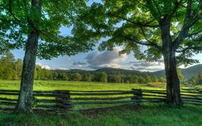 Пейзажи: Adirondack, New York, Адирондак, штат Нью-Йорк, луг, деревья, забор