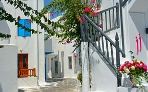 Город: Mykonos, Greece, Миконос, Греция, улочка, лестница, цветы