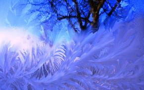 Текстуры: мороз, стекло, текстура, мороз на стекле