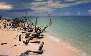 Пейзажи: Пляж, море, песок, коряги, небо, остров Кайо-Хутиас, Куба, пейзаж