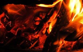Макро: костёр, огонь, угли, макро