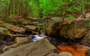 Природа: лес, деревья, речка, скалы, водопад, природа