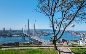 Город: Владивосток, Россия, мост, море, горы, сопки, дома, корабли, краны, дерево, дорожки, трава, небо, город
