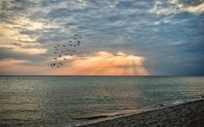 Пейзажи: Пляж, море, песок, вечер, закат, небо, облака, птицы, Евпатория, Крым, Россия, природа, пейзаж