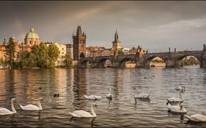 Город: Czech Republic, Prague, прага, панорама