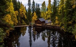 Пейзажи: осень, водоём, лес, деревья, мост, дом, пейзаж