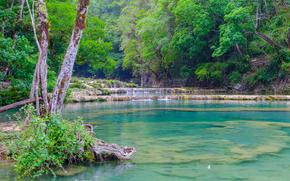 Природа: река, лес, деревья, водопад, природа