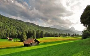 Пейзажи: поля, холмы, деревья, дома, пейзаж