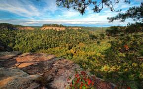 Пейзажи: Red River Gorge, Chimney Top Rock, Daniel Boone National Forest, Slade, Kentucky, ущелье Ред-Ривер, Национальный заповедник Дэниел Бун, Слейд, Кентукки, горы, ущелье, лес, ветки, панорама