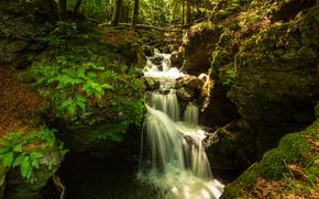 Природа: лес, речка, водопад, скалы, природа
