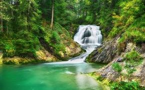 Природа: лес, деревья, водопад, речка, природа